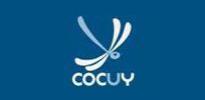 Cocuy